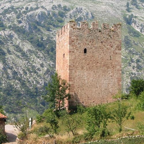 Torre medieval del entorno de Pocotrigo